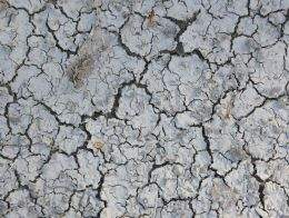 Texture Cracks. ( free textures, free download )