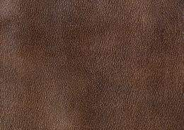Leather texture mammals part 4 ( free textures, free download )