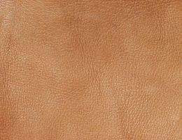 Leather texture mammals part 3