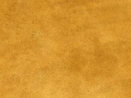 Leather texture mammals part 2