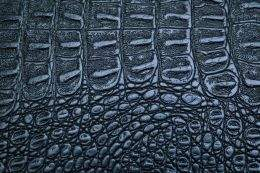 Crocodile skin textures  ( free textures, free download )