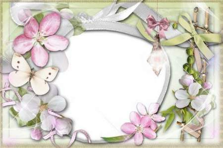 Photo frame png with flowers and butterfly