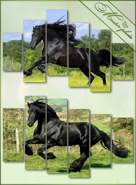 Running horse - Polyptych psd