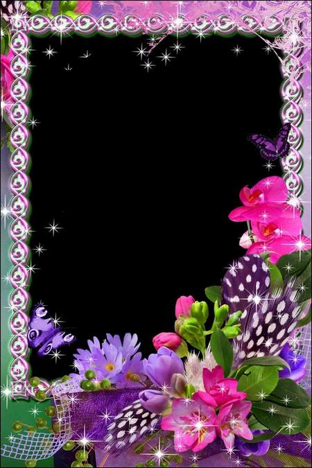 Flower photo Frames png download - the Aroma of lavender