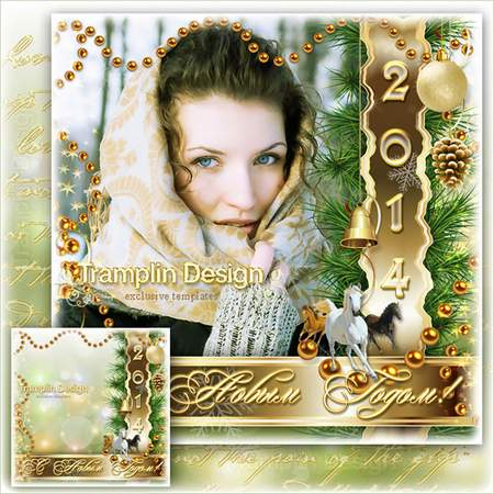 New Year frame – Father Frost and birdies