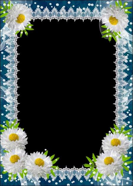 Photo frame - White daisies ( free photo frame psd + free photo frame png, free download )