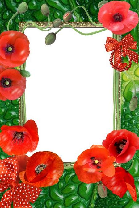 Framework Colour of poppies