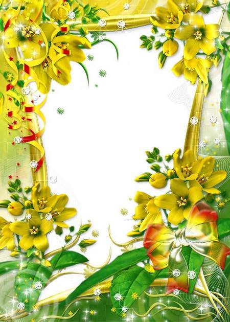 Photo frame - The flowers color as the Sun ( free photo frame psd, free download )