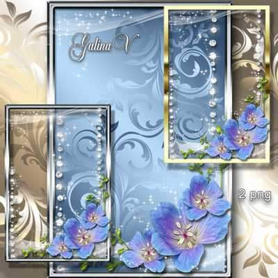 Shiny Photoframes - Tender Flowers ( free photo frame png, free download )