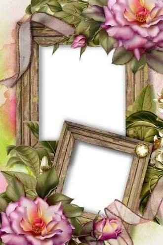 Flower Picture Frame - Elegant Pink Roses ( free photo frame psd, free download )