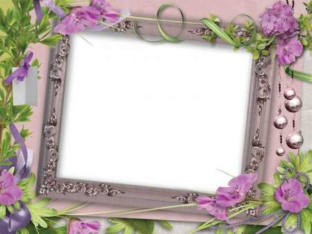 Photo frames - Parade of flowers, hydrangea flowers ( free 7 photo frames png, free download )