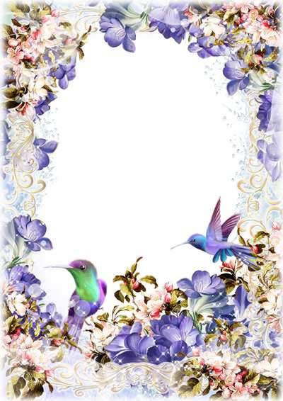 Floral photo frame psd with beautiful birds ( free photo frame psd, free download )