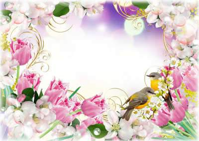 Flower Frame for photoshop download - Spring flowers