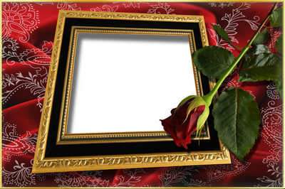 Photoframe with Rose (free photo frame psd + free photo frame png, free download)
