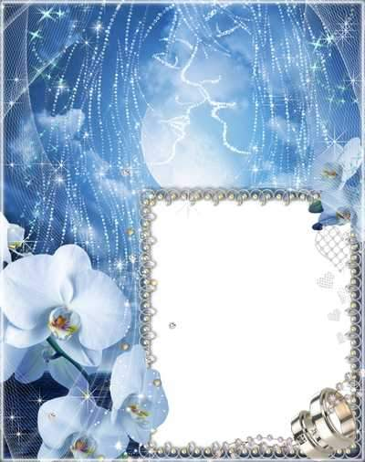 Wedding Frame for Photo - Blue Tenderness ( free Wedding photo frame psd, free download )