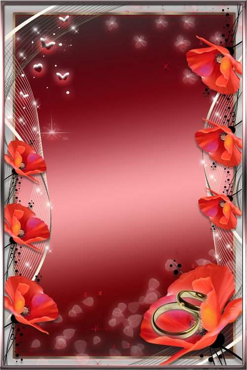 Romantic Photoframe - Red poppies ( free photo frame psd, free download )