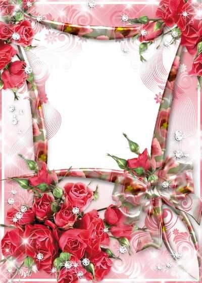 Beautiful Frame Pink Roses - Rose time ( free photo frame psd, free download )