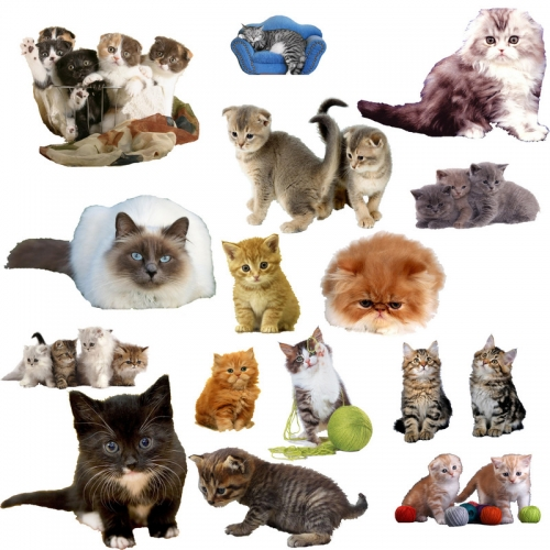 Dogs and cats on a transparent background free psd file