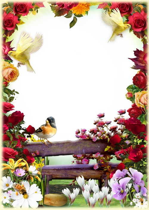 Floral photo frame with flowers and birds ( free photo frame