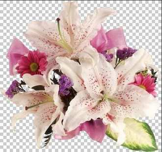 Lilies png - free flowers Lilies 46 png images download, transparent background