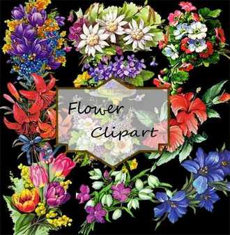 Flower Clipart psd ( free psd file download )