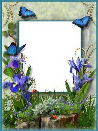 Flower Frame collage psd - Irises are delicate flowers