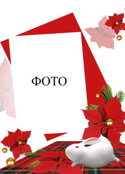 Beautiful christmas frame for photoshop with christmas decorations, pine sprigs and bells - 2013