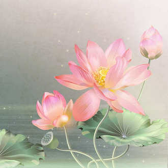 Multilayer PSD source for design in photoshop - Gentle lilies
