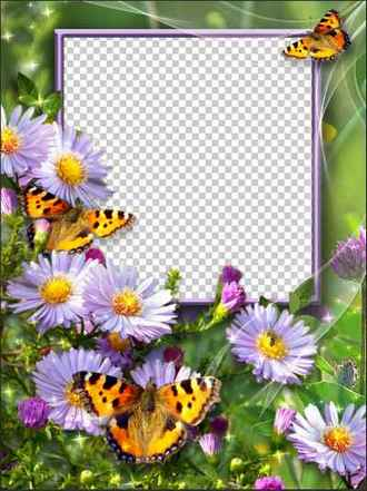 Photoshop frame template daisies download (free photo frame psd & free photo frame png)