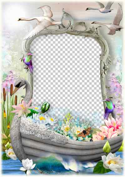 Romantic photo frame template Swan boat ( photo frame png & psd download )
