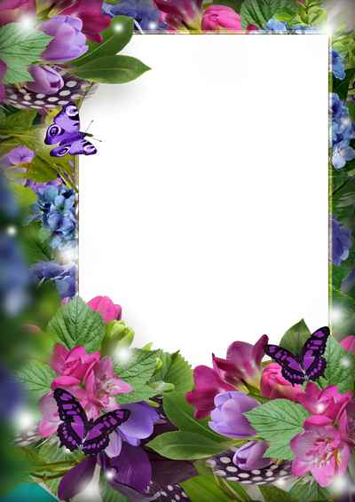 Flower Frame for photoshop download - On the meadow of flowers