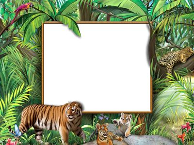 Nature with animals photo frames - Walk in the jungle ( frame psd ...