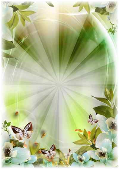 Frame with flowers and butterflies ( photo frame psd png download )