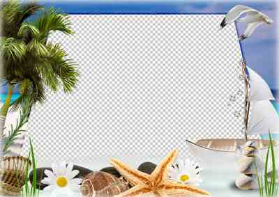 Marine frame - summer, sea, palm trees ( frame psd png download )