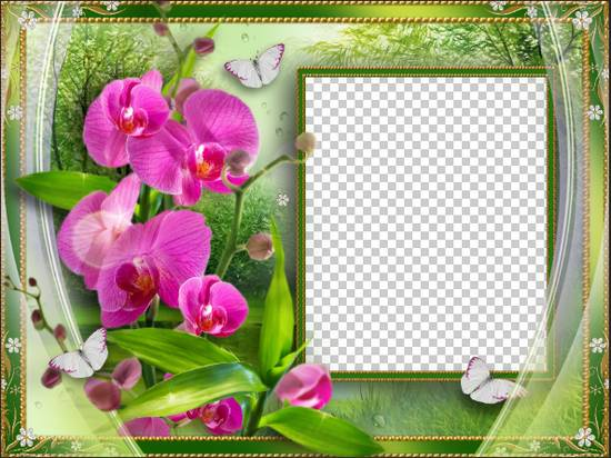 Photoshop frame template - Wonderful flowers ( frame psd png ...