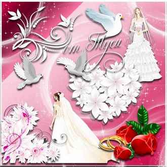 Wedding Clipart with transparent background ( psd, png, download )