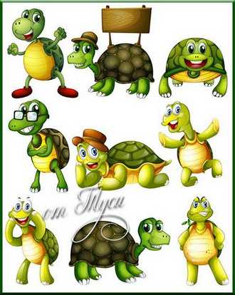 Clipart Turtle ( psd, 9 png, transparent, download )