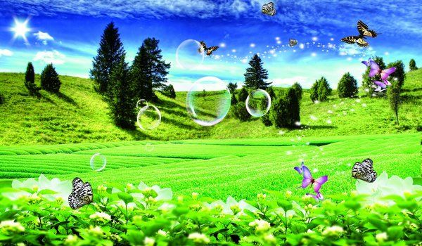 Main Free Psd Files Backgrounds Psd Photoshop Background Butterfly On Nature Psd Layered Download
