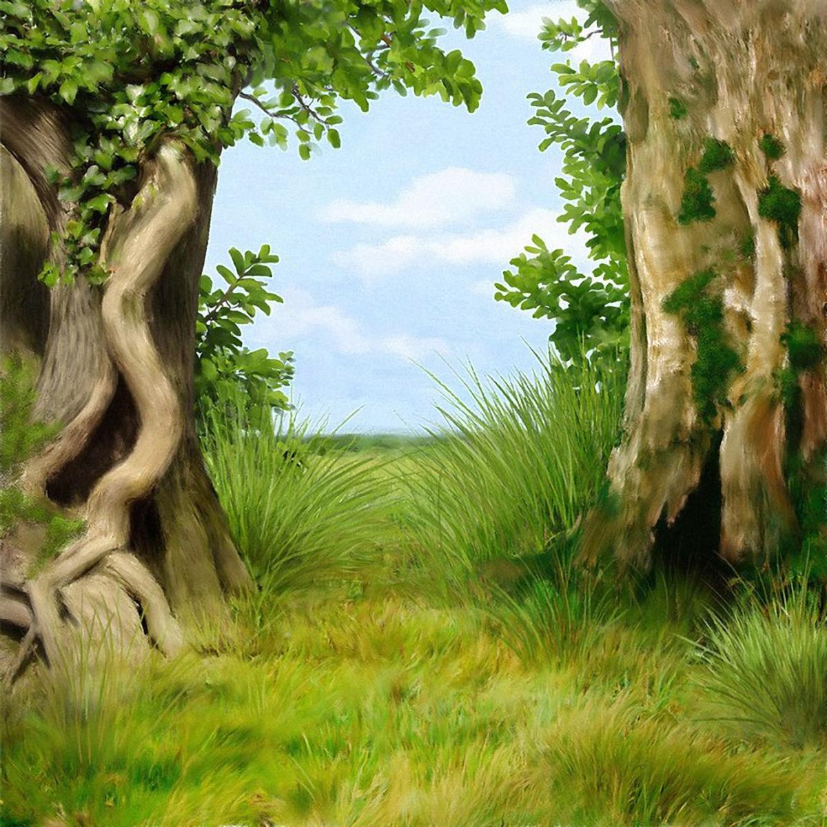 Сказочный лес картинки нарисованные