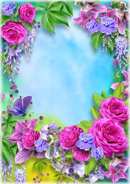Beautiful flowers and butterfly - photo frame template ( PSD, PNG ...