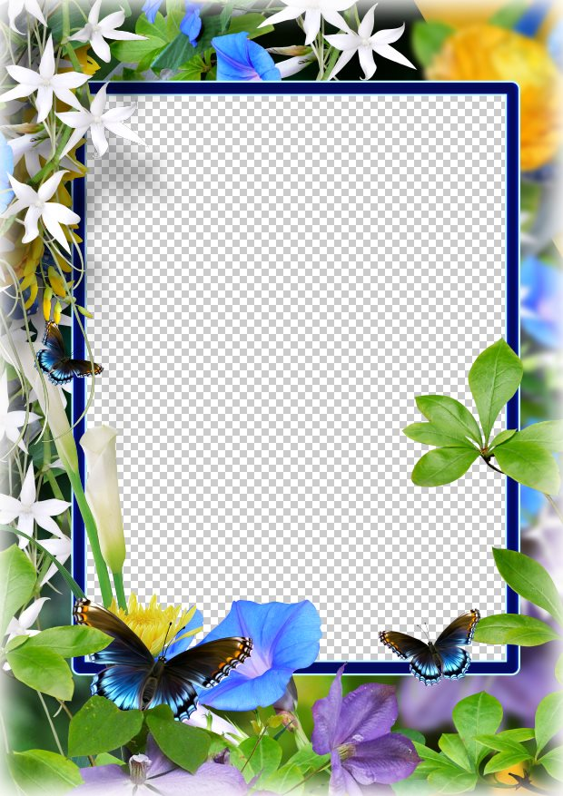 Beautiful frame, PSD, PNG, download. Transparent PNG Frame, Layered ...