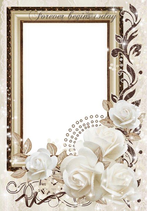 Free wedding png frame photo frame psd wedding white roses - Free ...