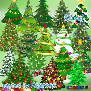Christmas Tree Png Images.Trees Tree Branches Forest Png Images Graphics Psd Files