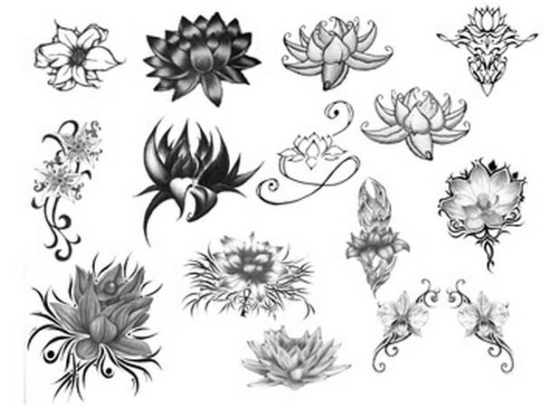 Lotus Flower Free Photoshop Brushes