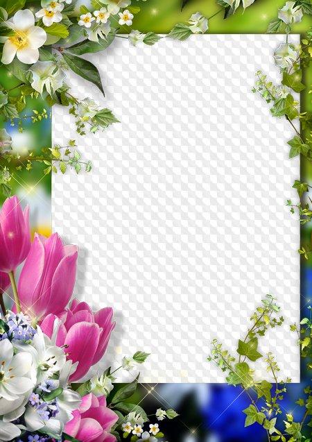 Marco para Photoshop - Primavera en mi Alma. Marco PNG transparente ...