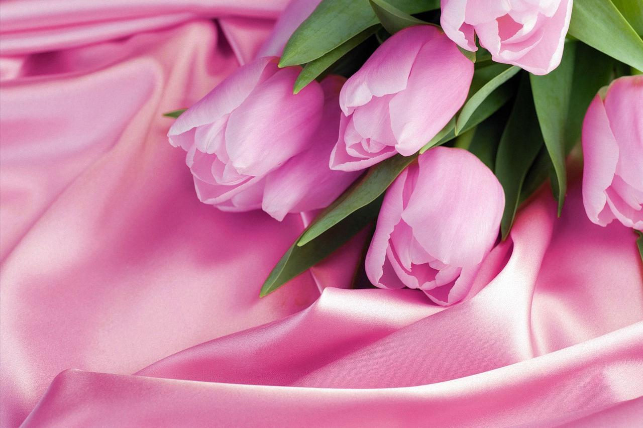 франции открытка с цветами поздравляем фото с хорошим разрешением такого
