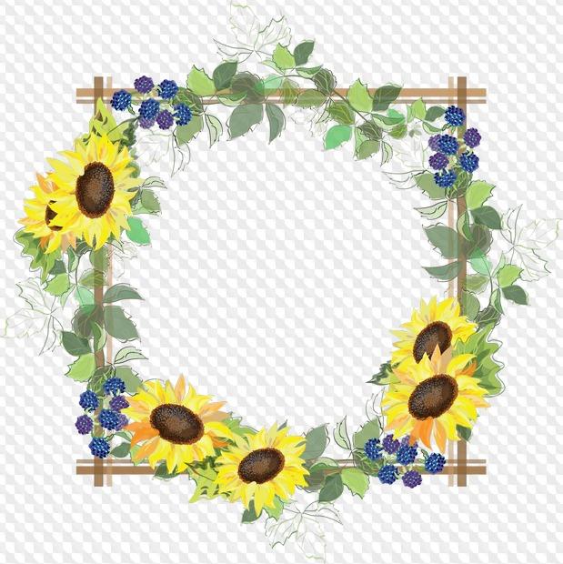 Colección de flores de marcos PNG