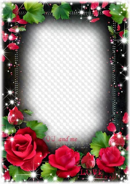 Marco De Fotos De Rosas Rojas Descargar Marco Png Transparente