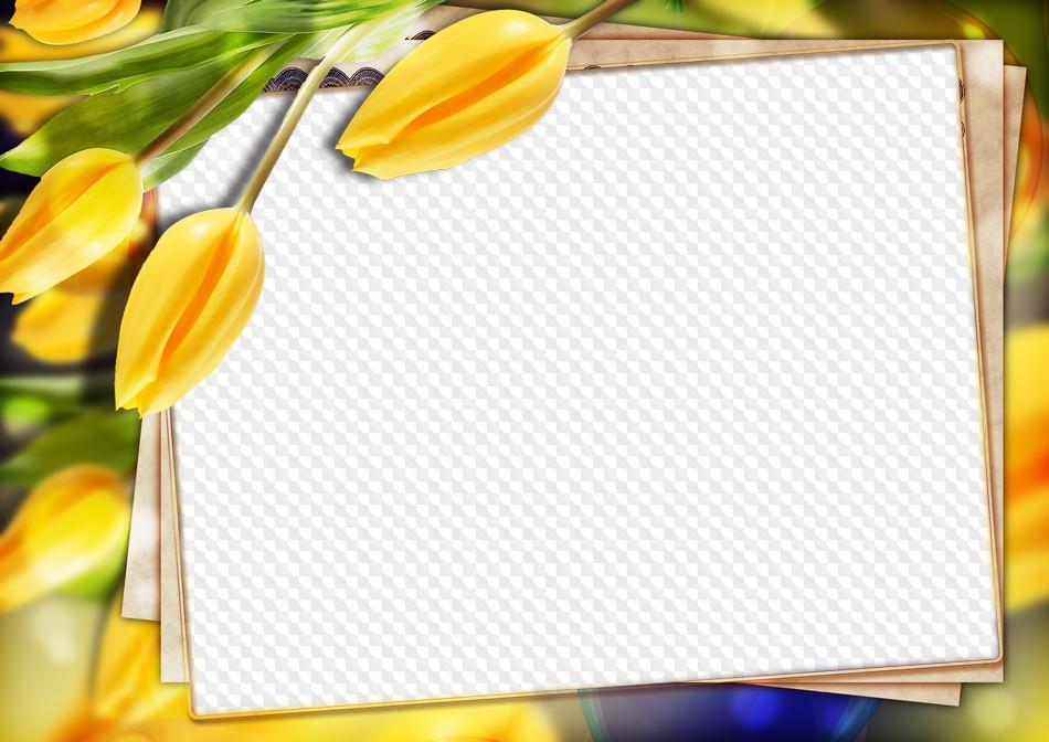 PSD, PNG Marco de foto tulipanes amarillos. Marco PNG transparente ...
