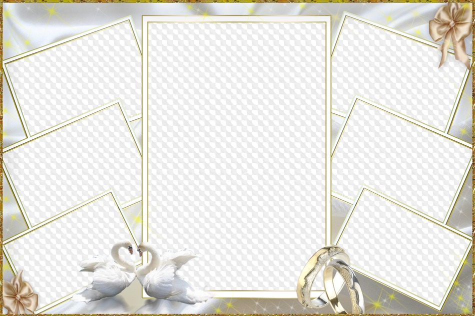 Marco de fotos de boda, collage. Marco PNG transparente, PSD ...